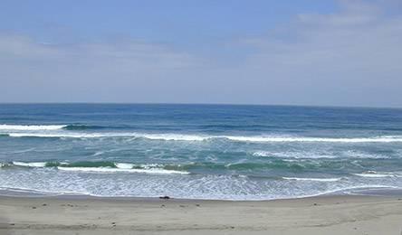 Как переплыть Тихий океан за 101 день