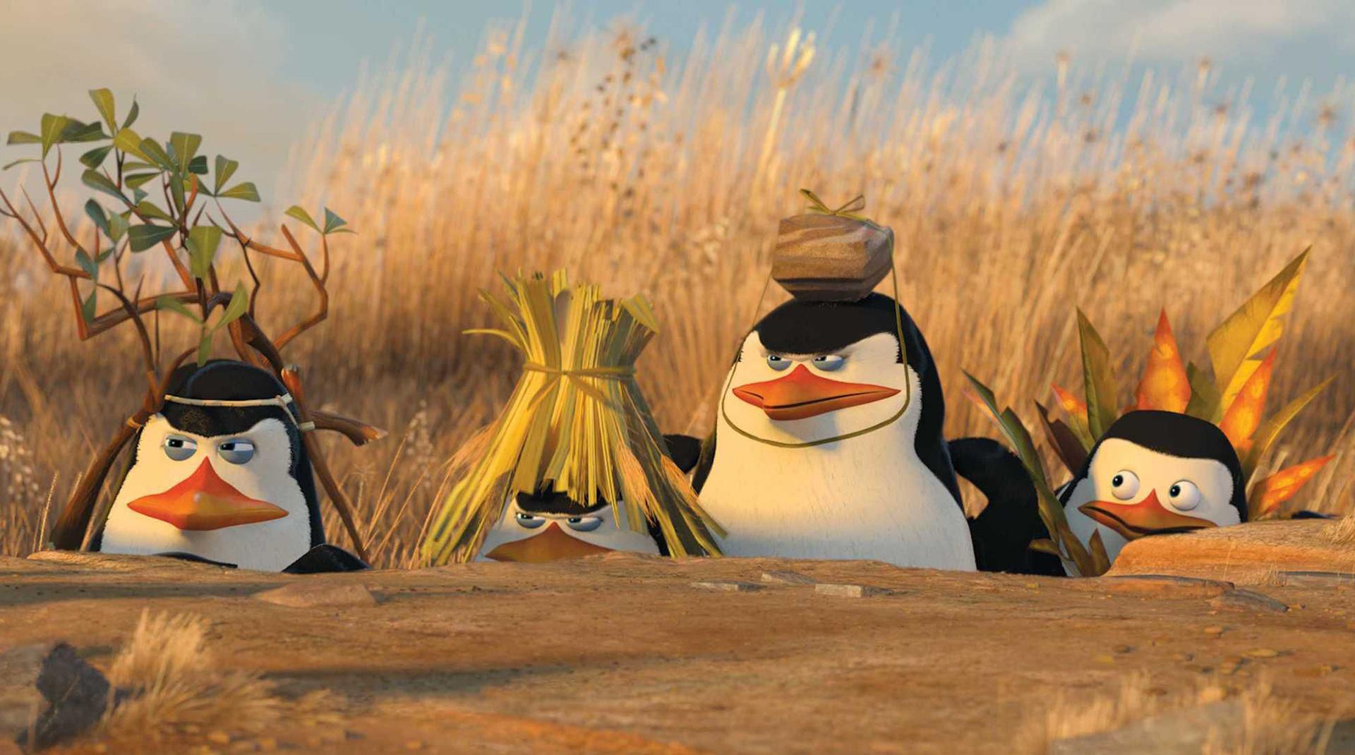Фильтр «Пингвин»: как не попасть под ограничения, и что делать, если его уже наложили