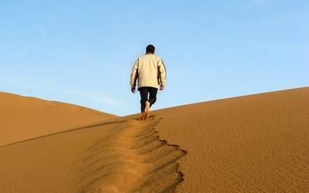 Продвижение молодого сайта: как пройти пустыню Сахару и остаться живым?