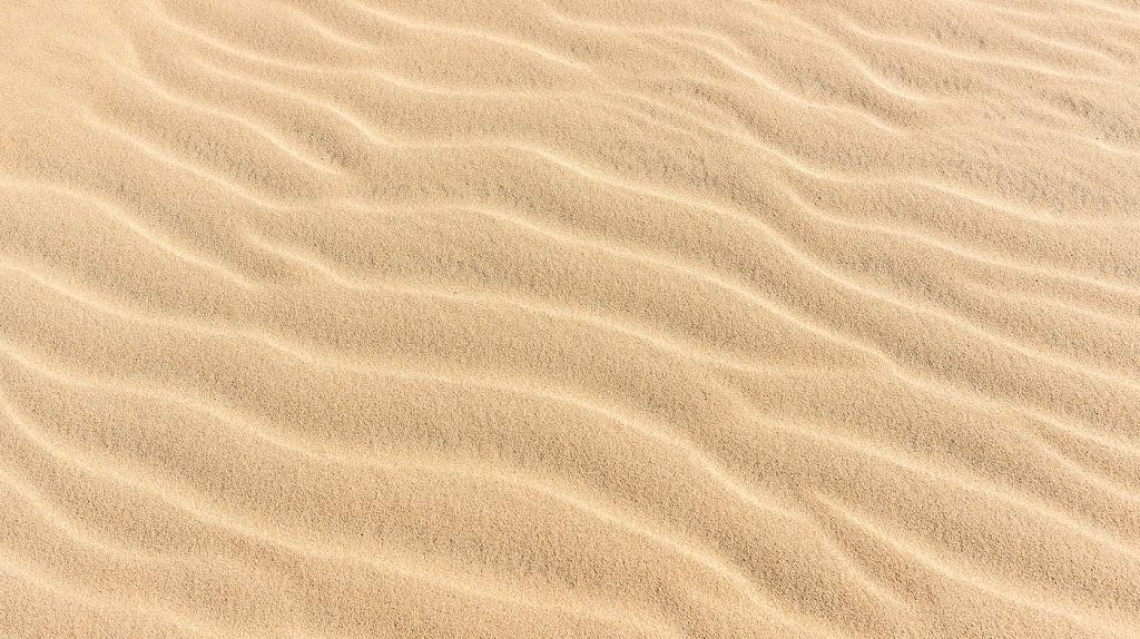 Первые итоги по «песочнице» TexTerra: что получилось, а что – не очень
