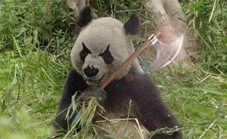 Как защитить большие сайты от «Панды»: 6 советов