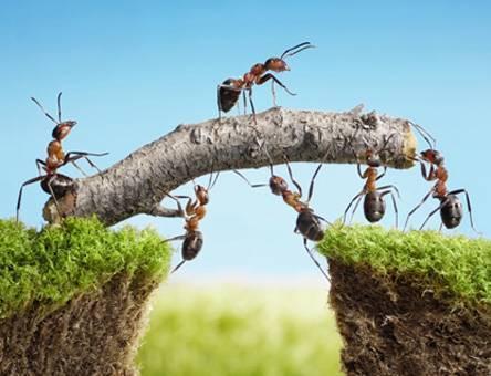 Почему маркетологи и продавцы должны работать в команде