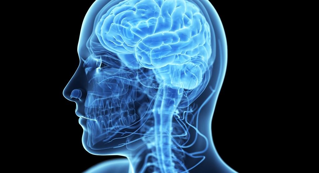 35 книг про мозг и психологию, которые помогут разобраться в себе и клиентах