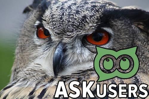 Спроси пользователя: обзор сервиса Askusers