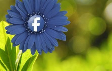 13 советов по использованию визуального контента в соцсетях