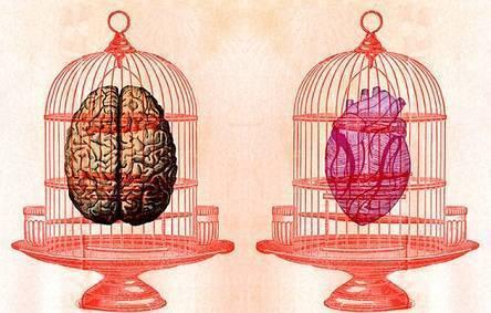 Мозги против секса: короткий эксперимент по раскрутке группы «Вконтакте»