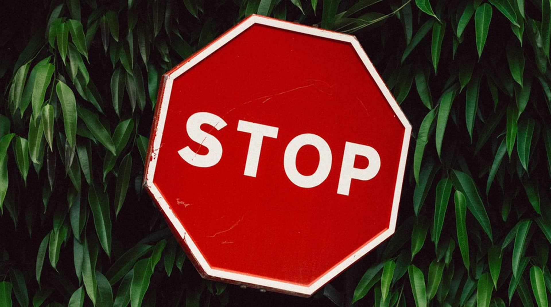 Билли Айлиш, Джоан Роулинг, Comment Out – как люди и компании справляются с культурой отмены