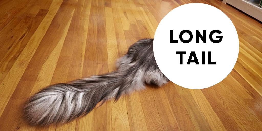 Как попасть в блок быстрых ответов Google, используя long tail запросы