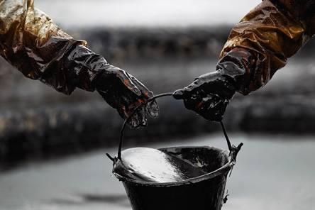 Поисковый трафик как нефть
