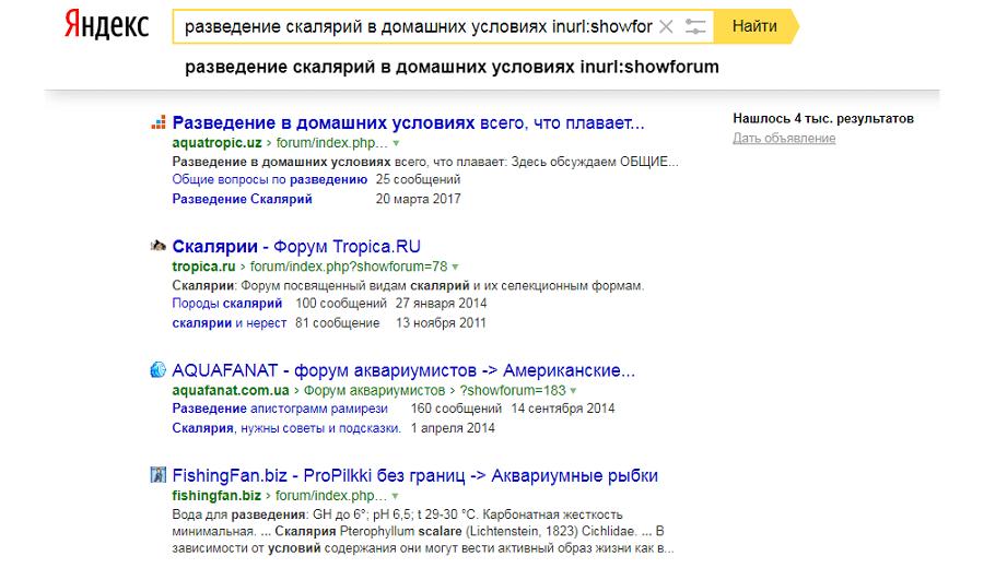 Раскрутка сайтов inurl forum бесплатный хостинг с apache php и mysql без рекламы