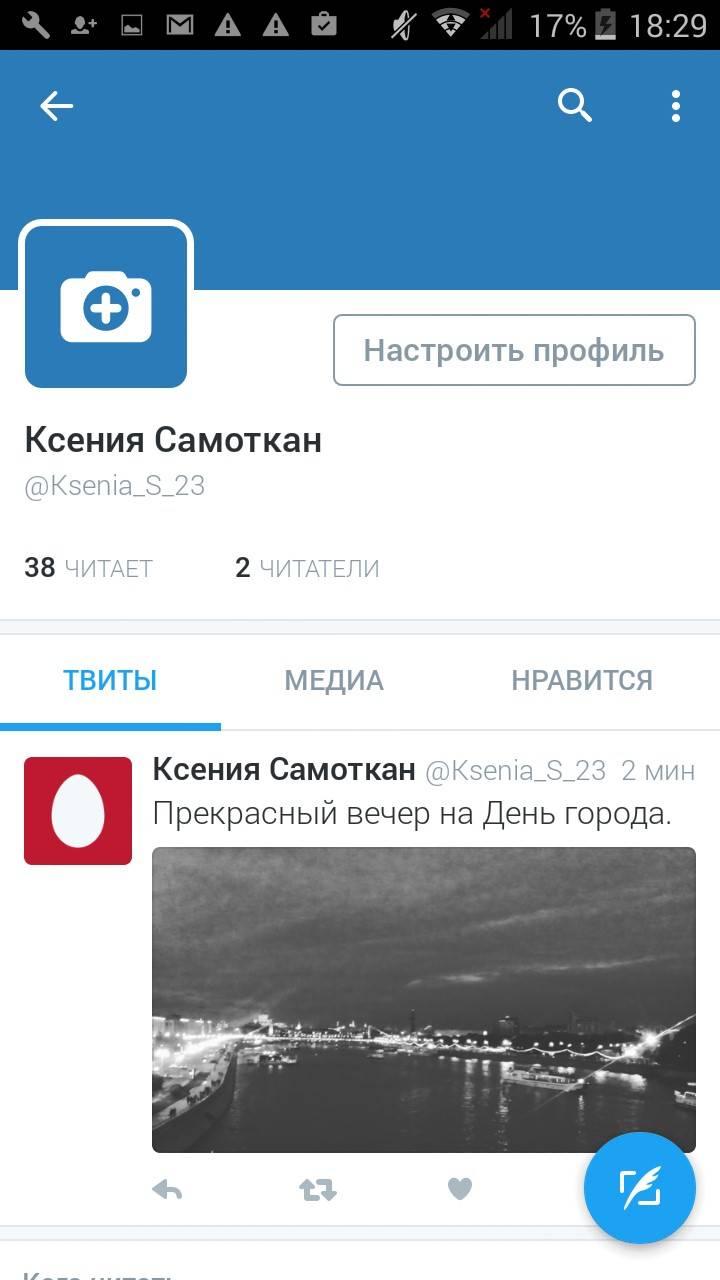 Примерно так выглядит профильная страница пользователя «Твиттера»