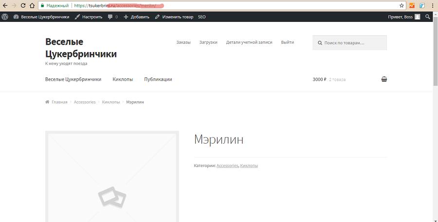 Идеальный SEO URL товара: есть название продукта и категории, нет лишних префиксов
