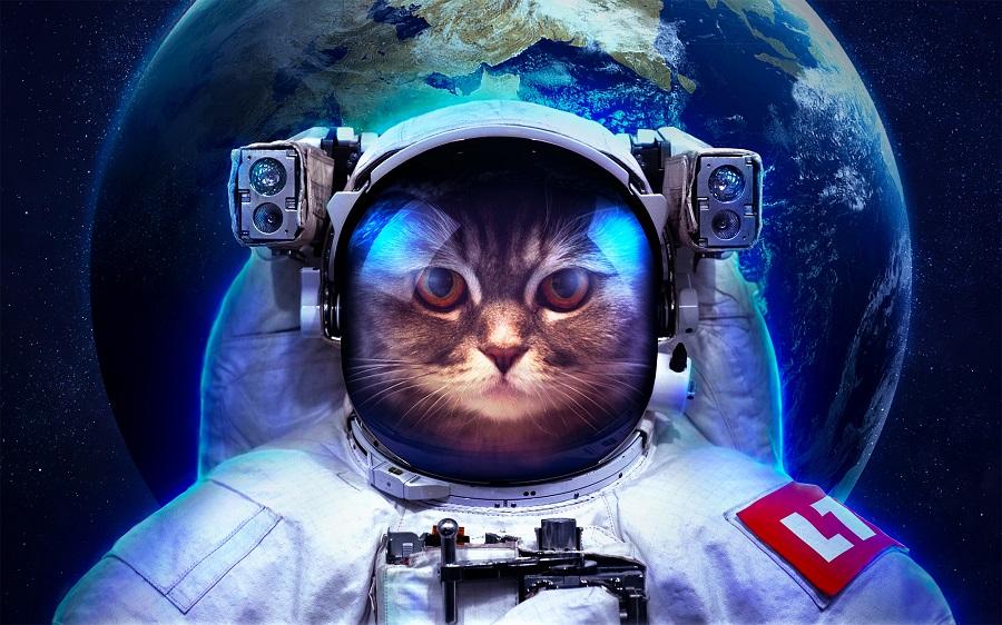 Ух ты, я в космосе – не останавливайся, придумай еще что-нибудь