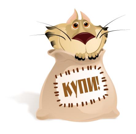 К сожалению, сегодня покупка франшизы похожа на покупку «кота в мешке» - при всех красивых цифрах и красочной упаковке, далеко не каждая франшиза способна принести прибыль