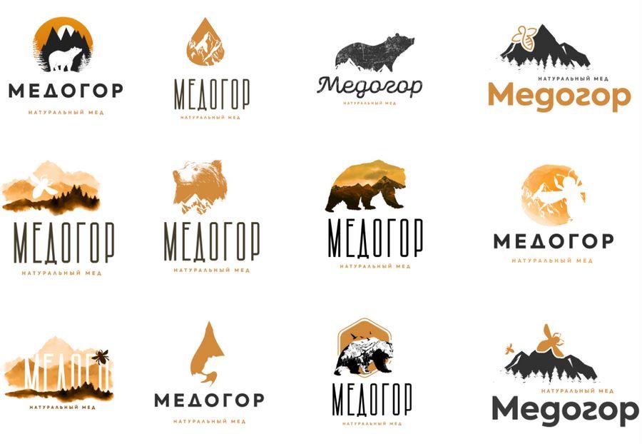 Основные варианты логотипов, которые обсуждались с клиентом