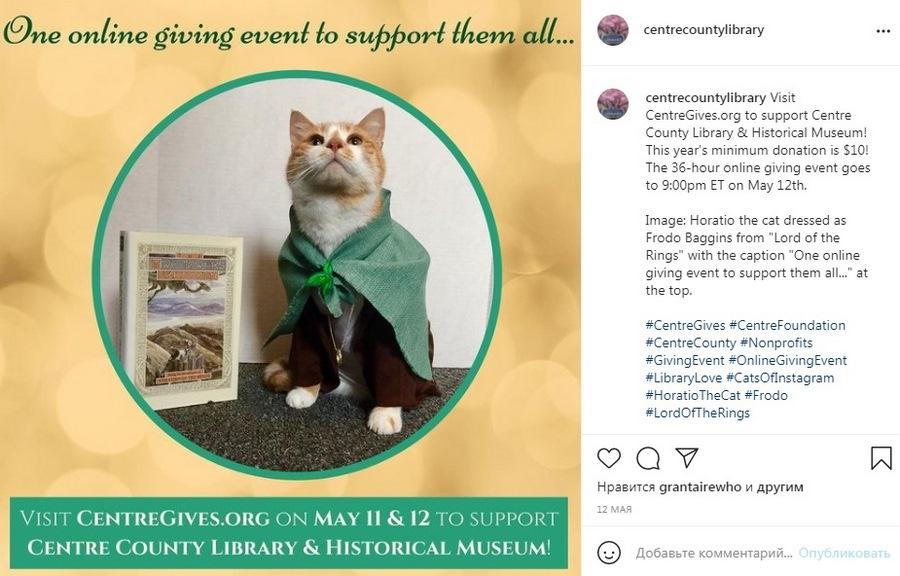 Здесь Гораций рекламирует благотворительное онлайн-мероприятие. В общей сложности посты набрали 828 лайков