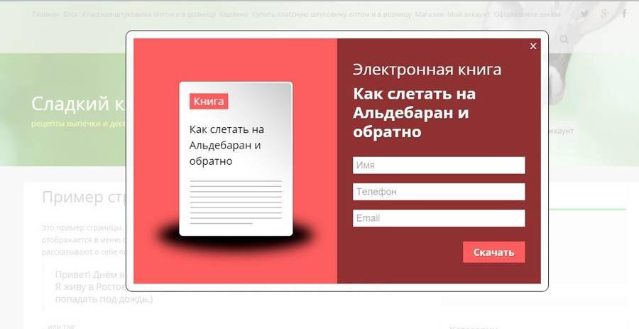 Пользователи могут скачать книгу в обмен на Email и телефон