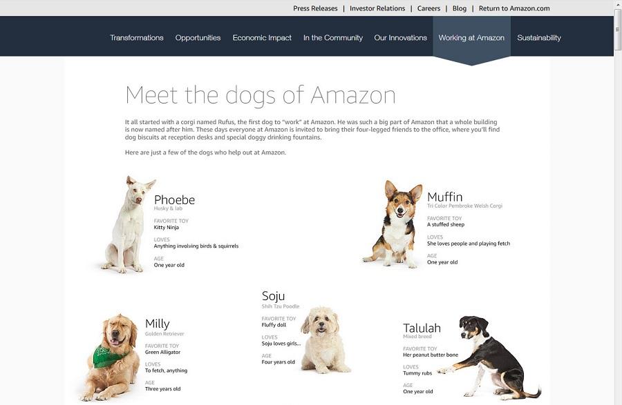 Собаки Amazon