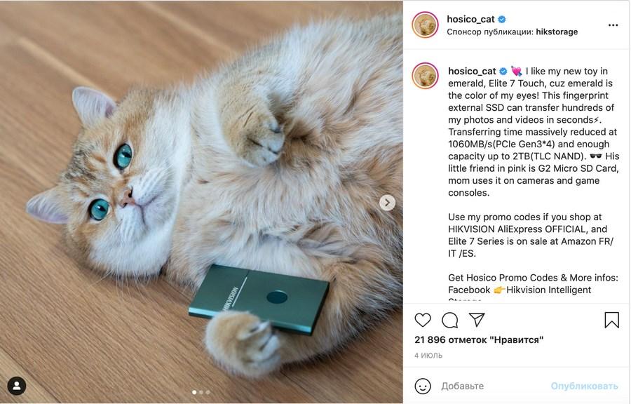 Реклама благотворительной акции, внешнего жесткого диска и мерча с котиком
