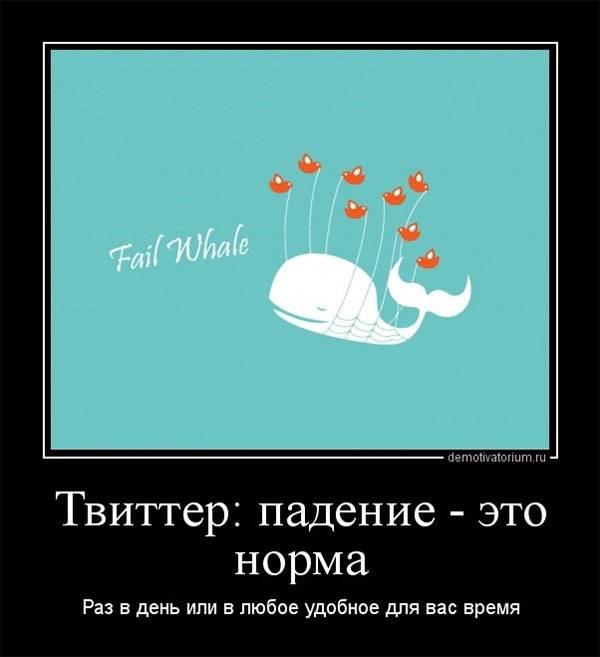 Демотиватор на тему «падения кита»