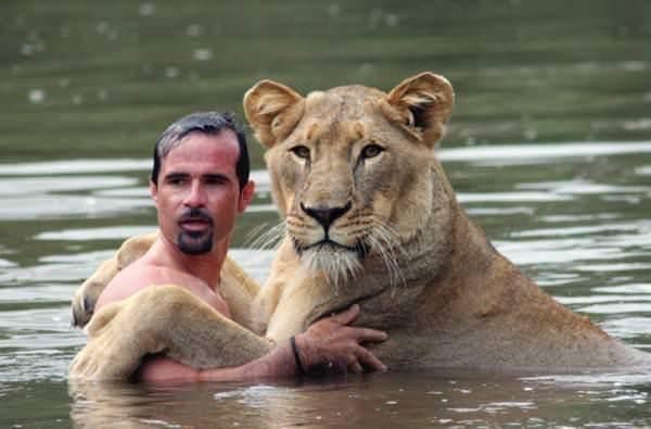 Ему легче подружиться с дикой кошкой