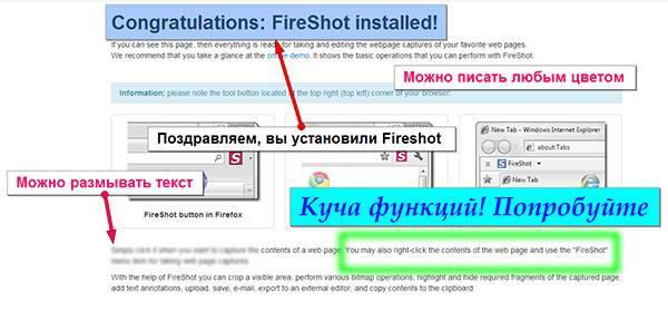 Fireshot в действии