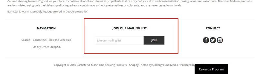 Форма подписки в подвале сайта. Пользователи ее найдут, так как за подписку полагается бонус
