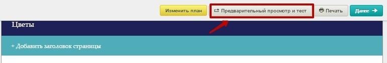Нажмите на кнопку «Предварительный просмотр и тест»