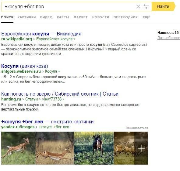 В полученных результатах присутствует слова «косуля» и «бег», а слово «лев» отсутствует