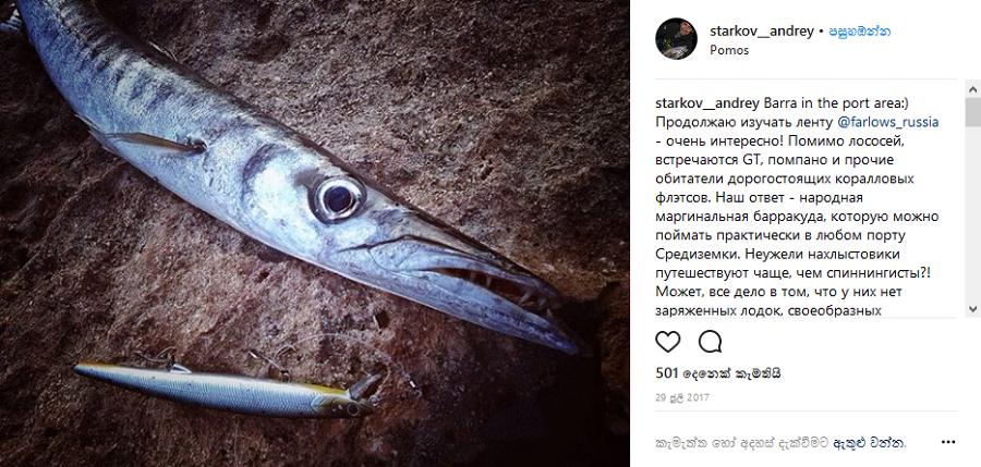 Известный рыбак Андрей Старков изучает товары рыболовного магазина